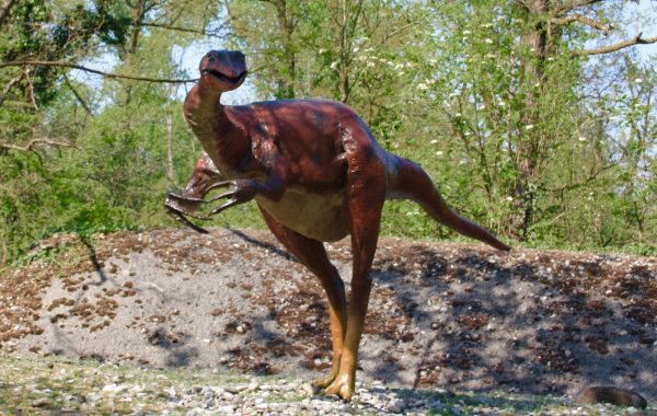 Gallimimo (Gallimimus)