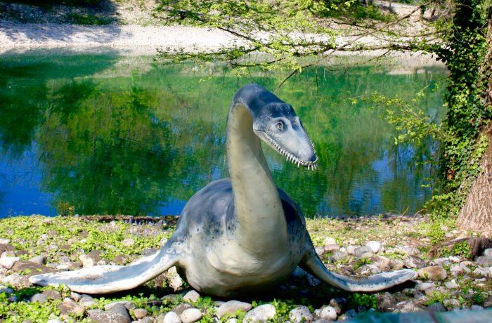 Plesiosauro (Plesiosaurus)