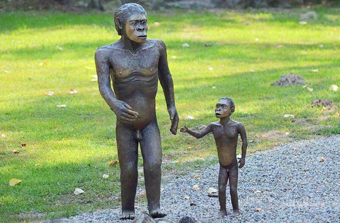 Australopiteco (Australopithecus)