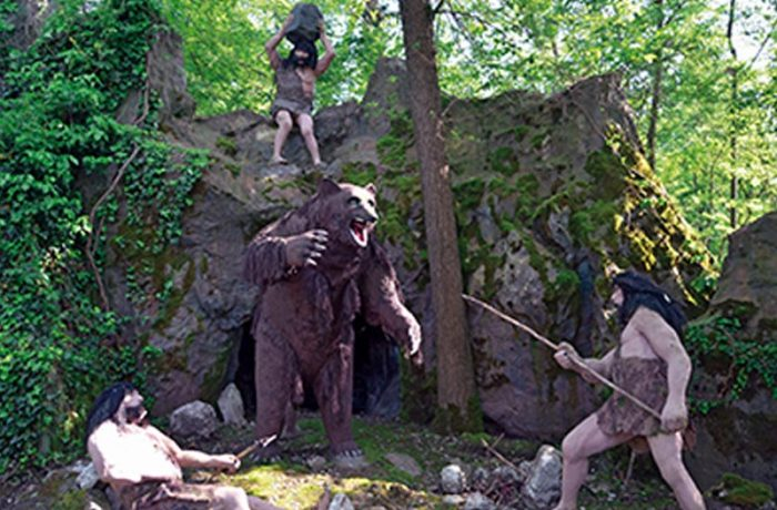Orso delle caverne (Ursus)