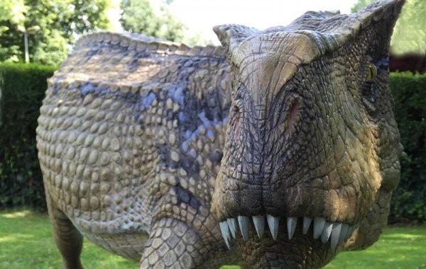 Ticinosuco (Ticinosuchus)