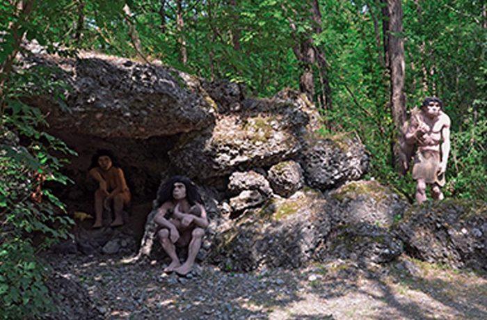 Uomo di Neanderthal  (Neanderthalensis)